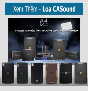 Loa CASound K310