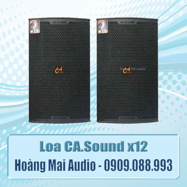 Loa CASound x12