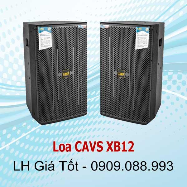 Loa CAVS XB 12