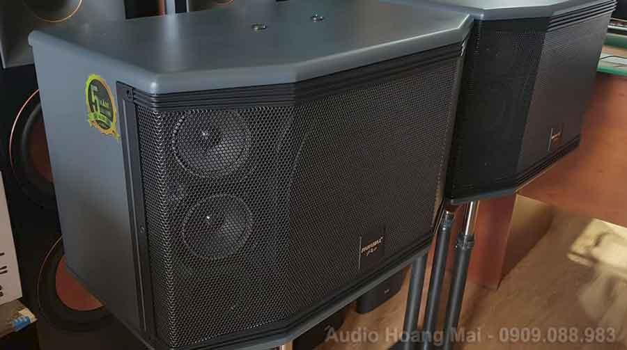 Loa Paramax Pro C10