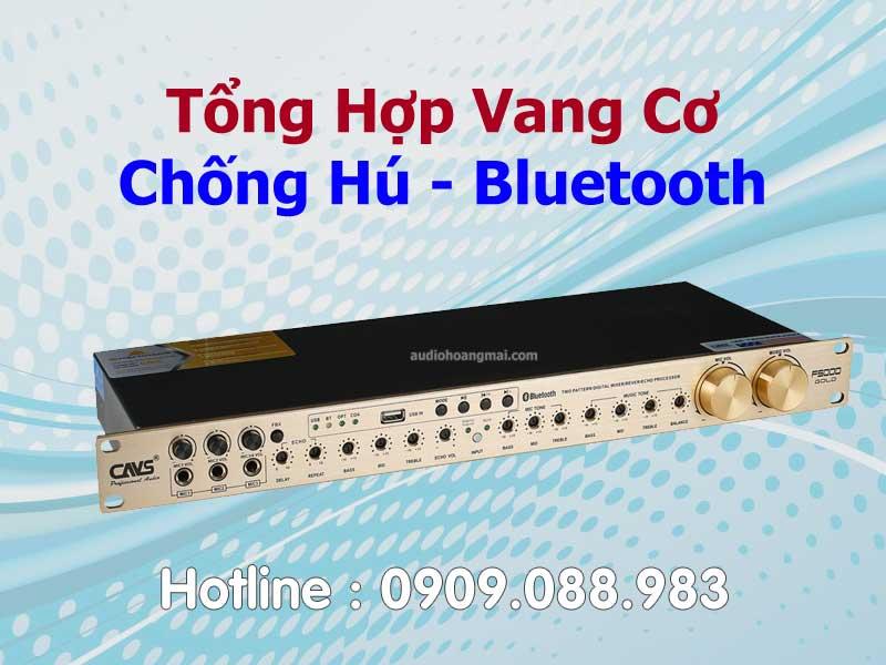 Vang Cơ - Chống Hú - Bluetooth