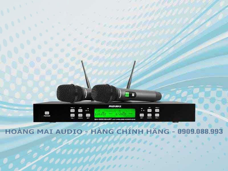 Micro Paramax SM 1000 Smart